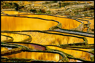 China - Rice terraces Of Yuanyang